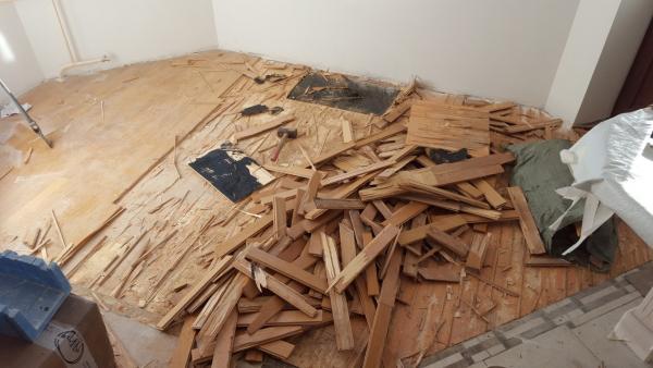 Dovanoju demontuota mediena-1