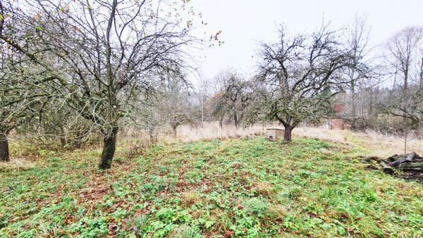 1.136 ha namų valdos sklypas Atgimimo g. Utenos m.-3