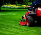 Žolės pjovimas, vejos pjovimas-0
