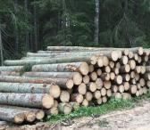 Perku įvairiu rūšiu mediena.-0