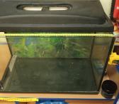 Parduodamas naudotas akvariumas-0