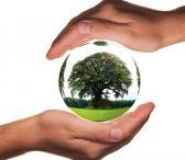 Ekologiškas valymas BioLife Cleaning-0