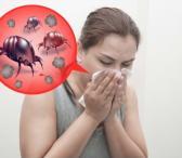 Alergenų naikinimas-0