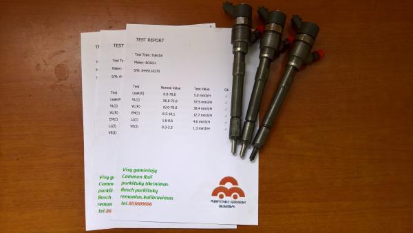 Kuro purkštukai Opel-Antara.0445110270-0