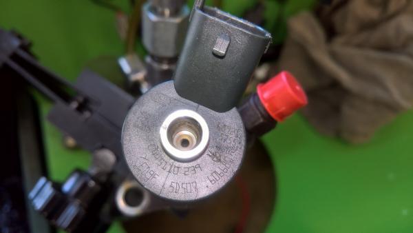 Kuro purkštukai Peugeot-307  0445110239-1