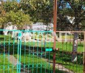 Parduodamas sodo namas Dercekliuose-0