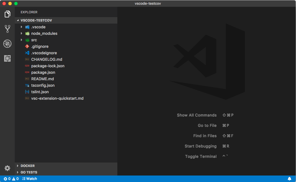 VSCode with opened extension