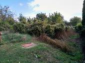 Ingatlan árverés 8174 Balatonkenese, BALATONKENESE képe