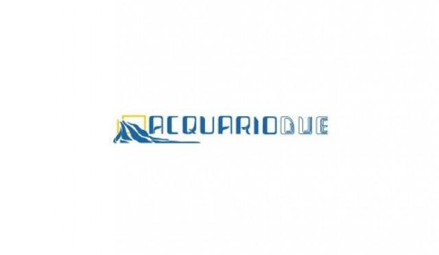 Logo Acquario Due