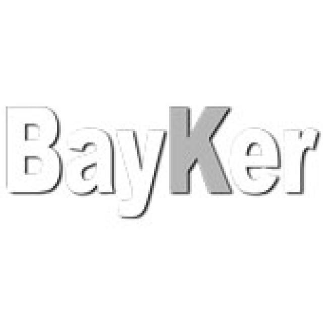 Logo Bayker