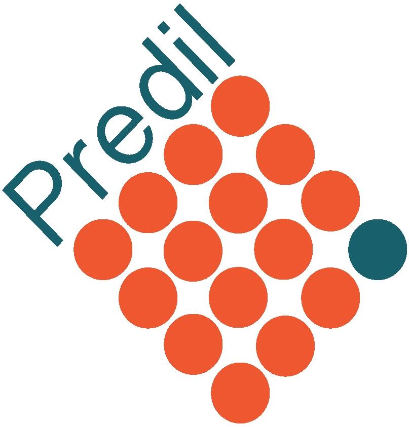 Predil Srl logo