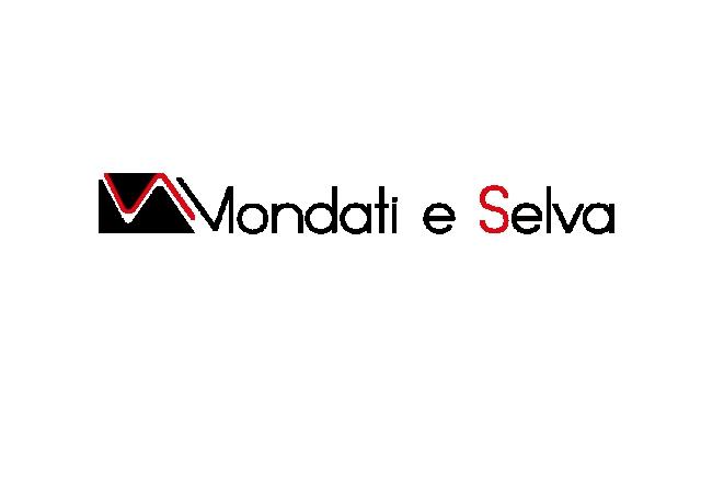 Mondati e Selva s.r.l. logo