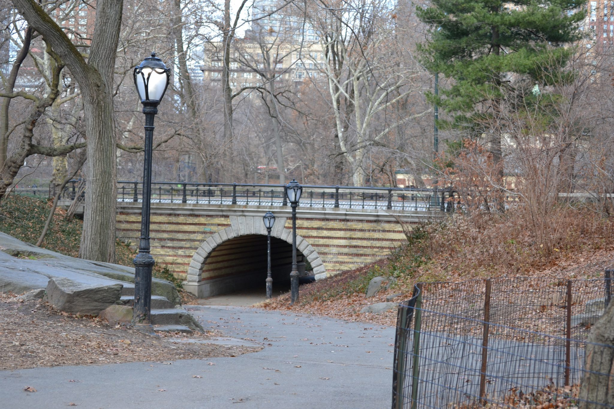 Eine Woche in New York: Central Park & Metropolitan Museum of Art - dsc 0069
