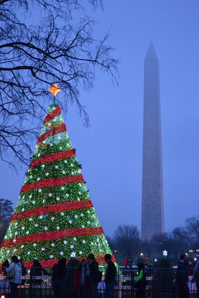 Eine Woche in New York: Tagesausflug nach Washington, D.C. - DSC 0294 e1425237691447 683x1024