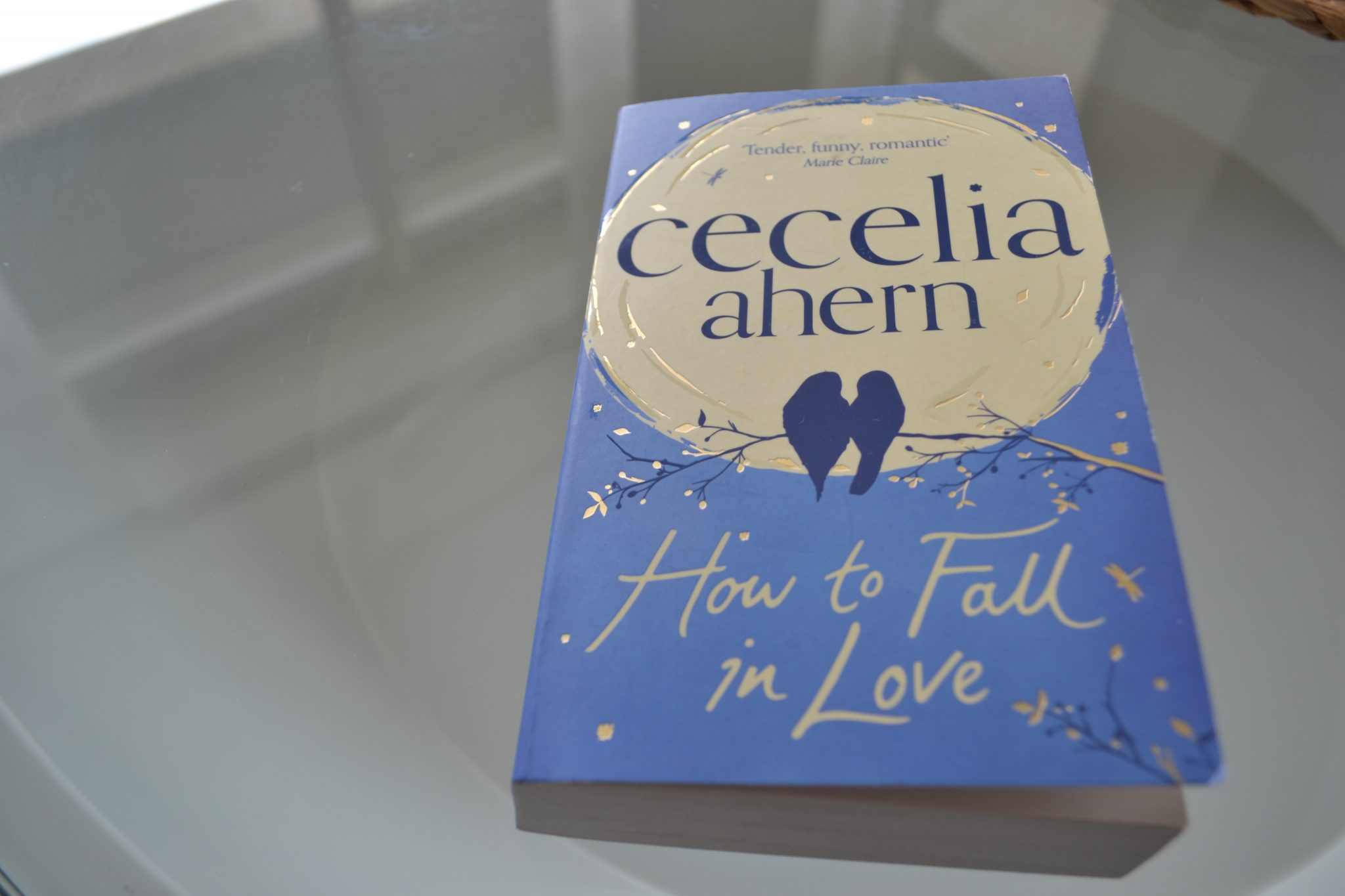Books: How to Fall in Love | Cecelia Ahern