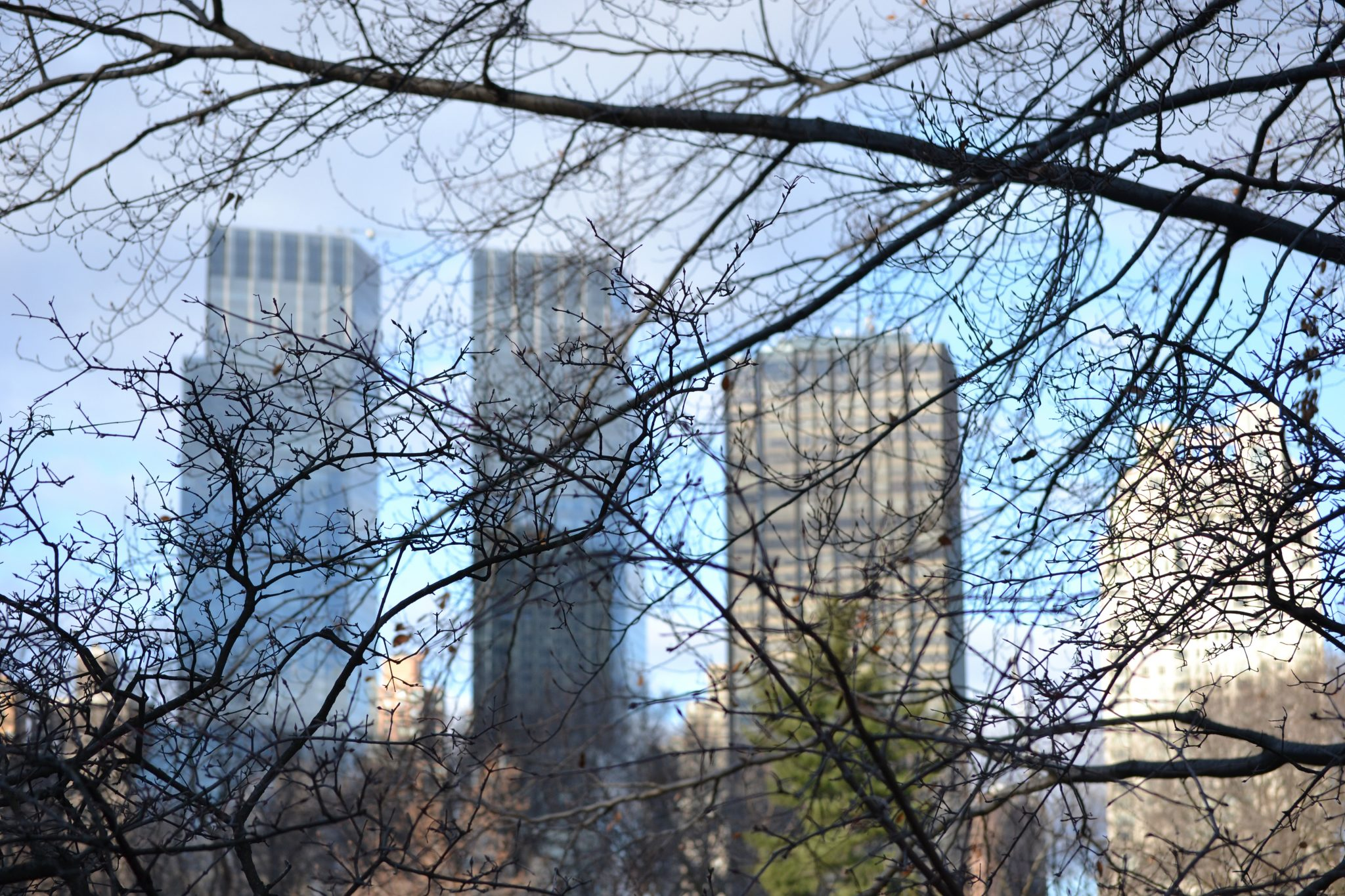 Eine Woche in New York: Central Park & Metropolitan Museum of Art