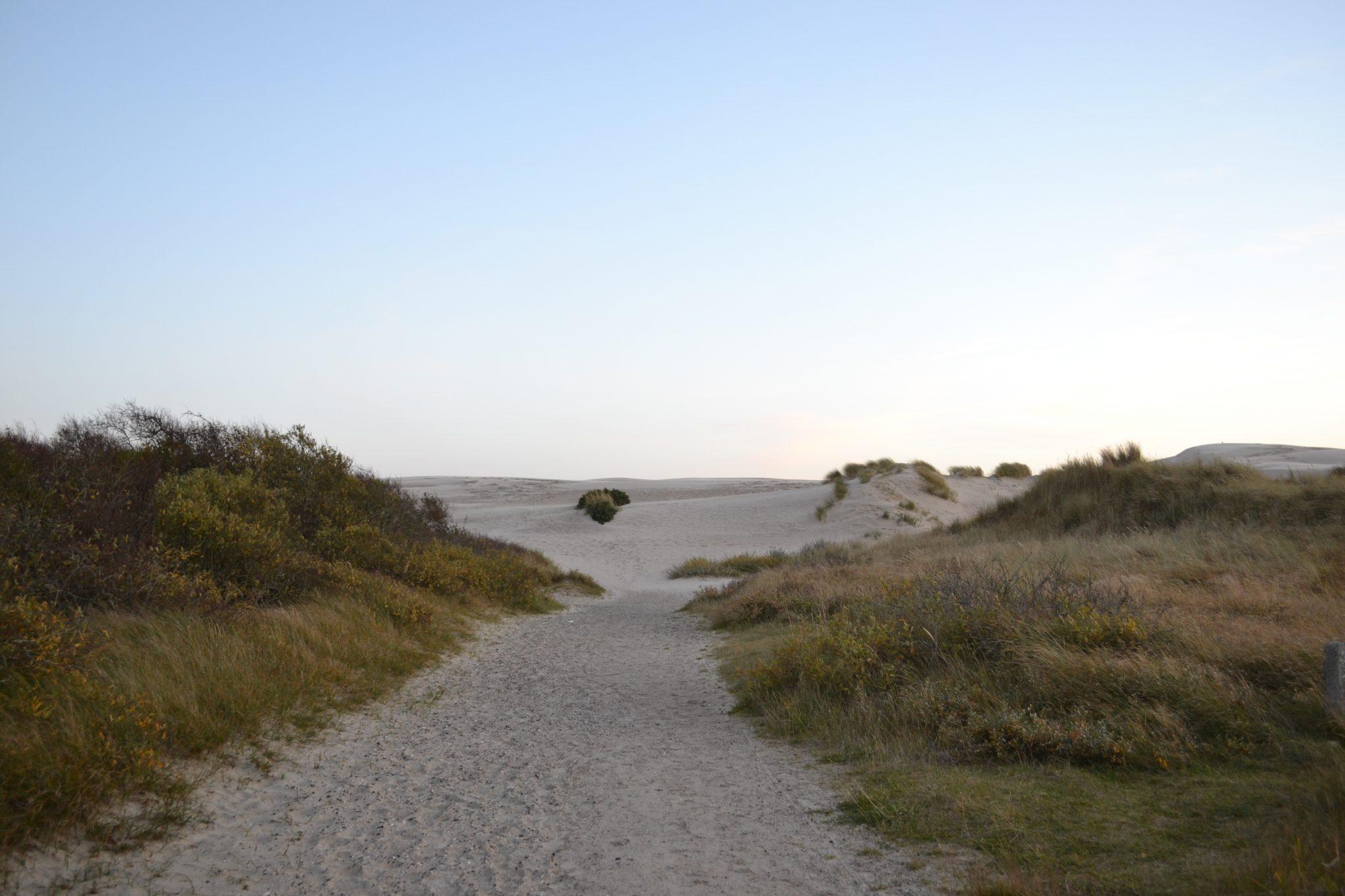 Travel Diary: Dänemark Roadtrip | Rabjerg