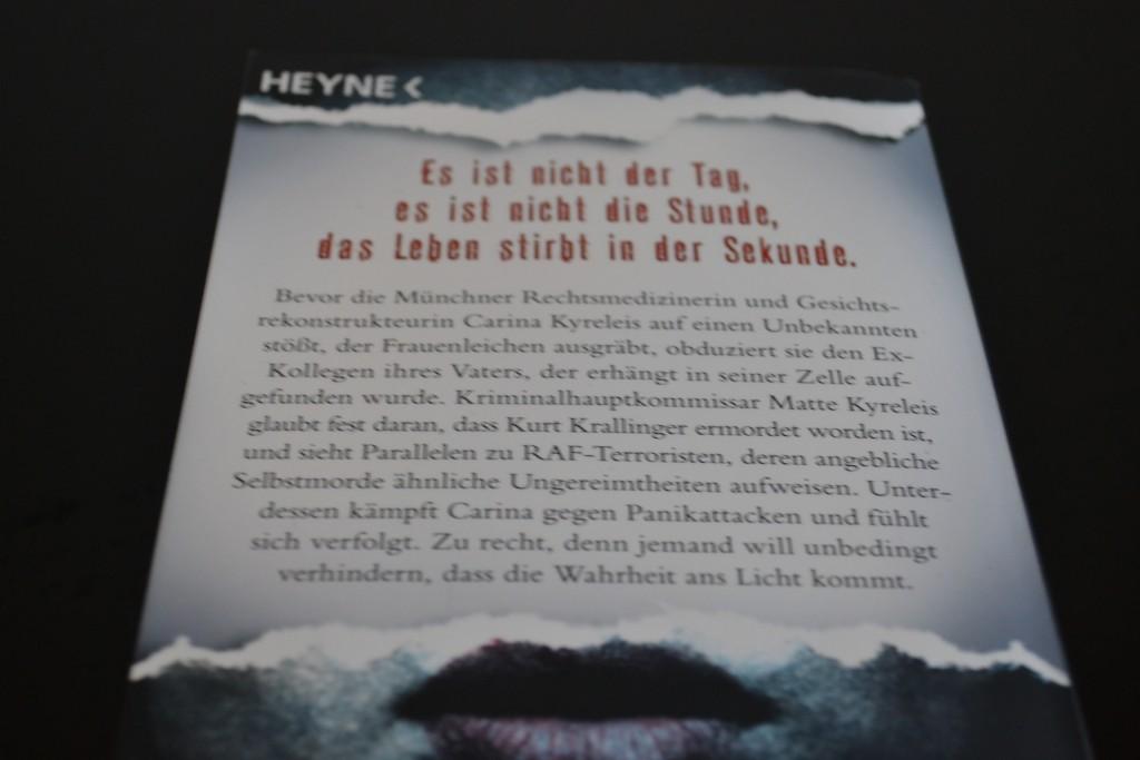 Books: Die Zerrissenen   Stephanie Fey - DSC 0222 1024x683