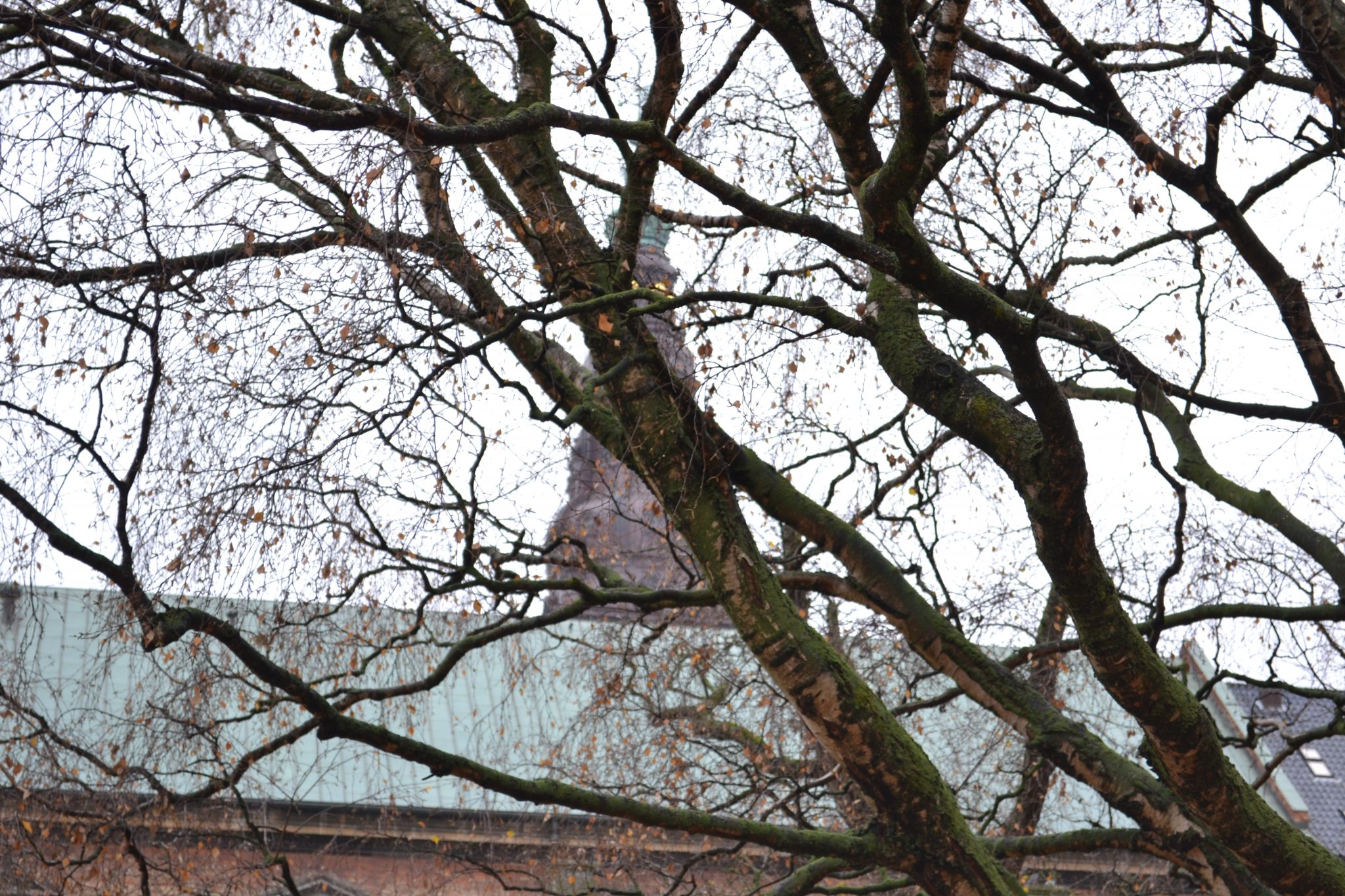 Travel Tip: Sightseeing in Kopenhagen