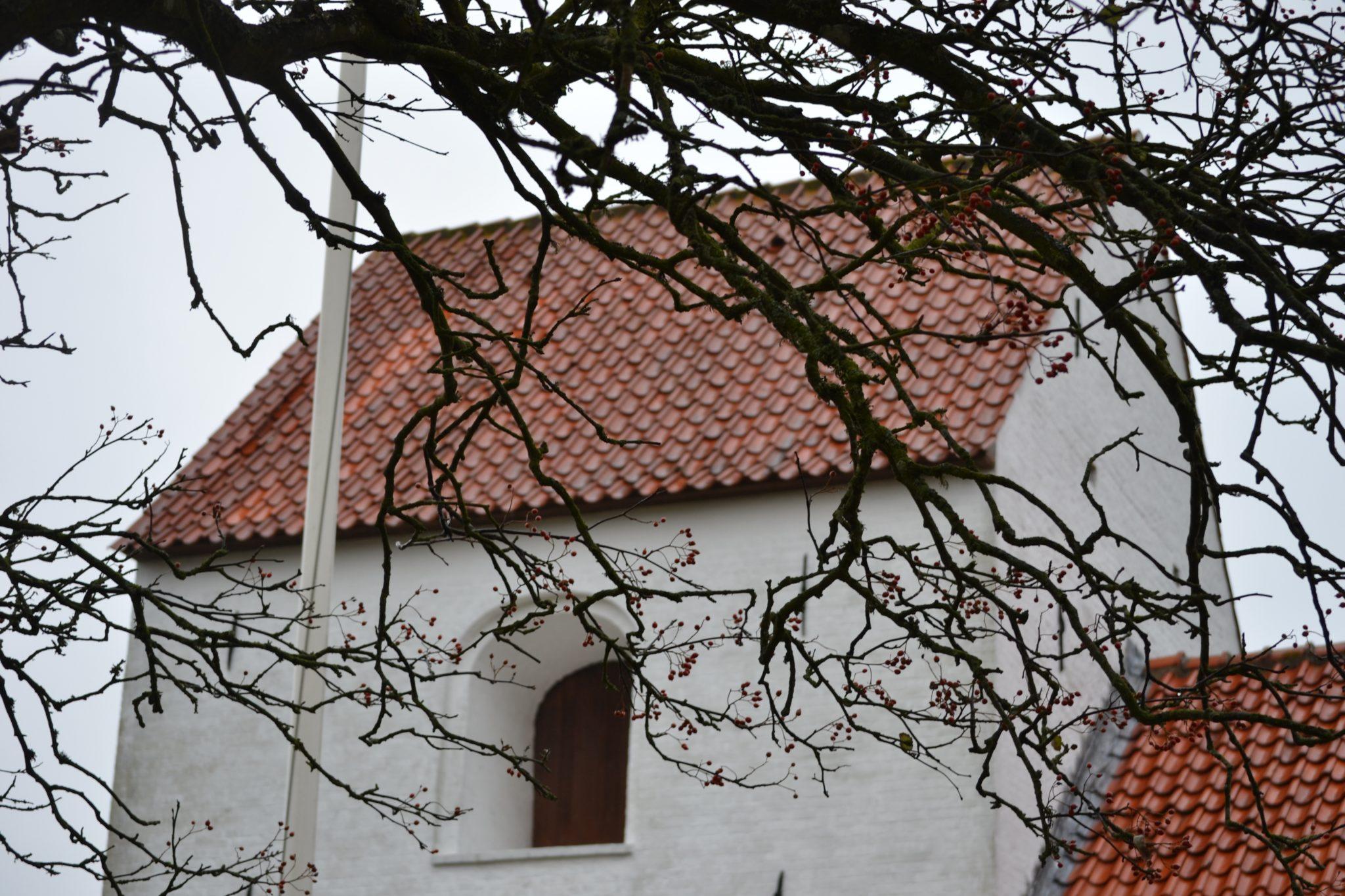 Travel Diary: Dänemark Roadtrip | Blokhus & Thy Nationalpark