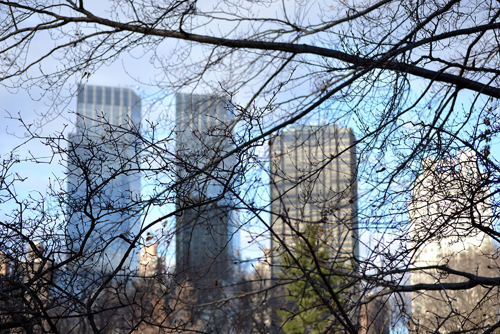 Travel Tip: 5 Things to do in New York for Free - new york 1