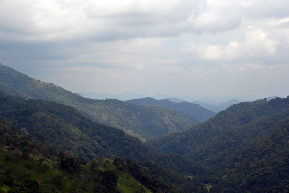 Travel Tip: Reiseroute Sri Lanka - NuwaraEliya 7