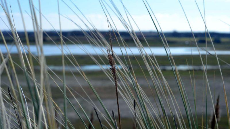 Travel Diary: Ein Wochenende in Zeeland | Niederlande