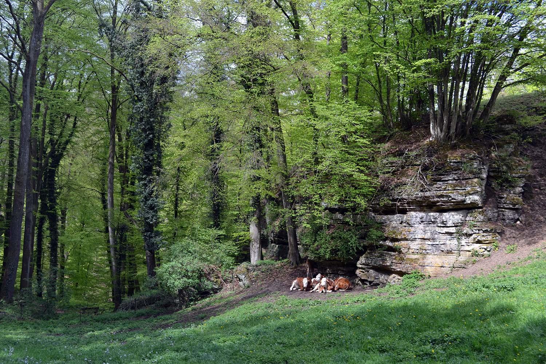 Travel Diary: Een weekendje weg in Luxemburg - Luxemburg 4 1