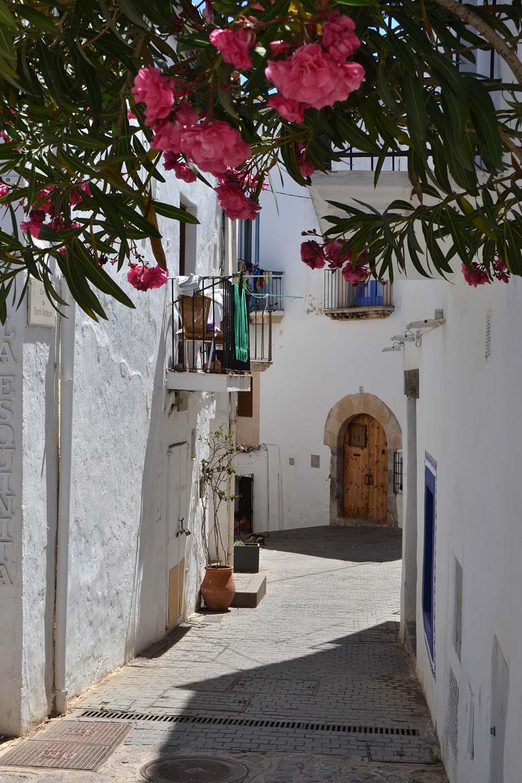 Travel Diary: Eine Woche auf Ibiza | Spanien - Ibiza 2