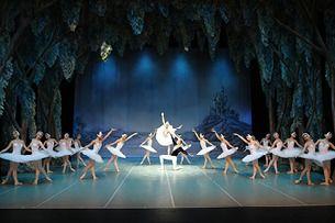 Svansjön - St Petersburg Ballet