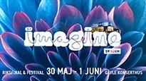 Imagine Sweden Festival, 1 juni