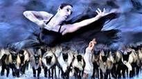 Dansserien: Norrdans - Alfhild Agrells arv