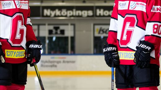 Nyköping Gripen - Allettan/Forts.serie