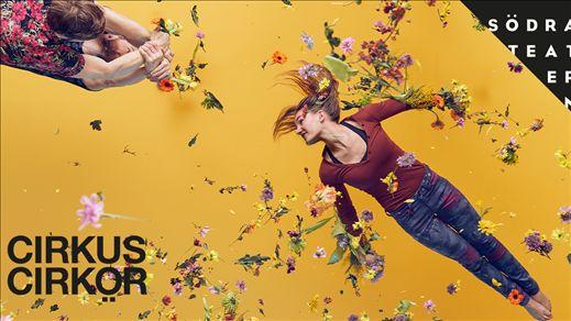 Cirkus Cirkör -  Bloom