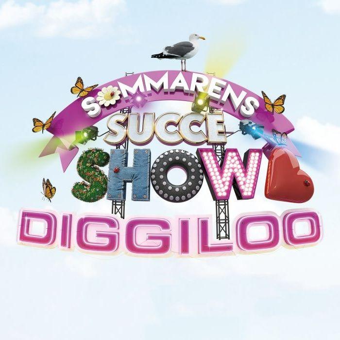 DIGGILOO 2019