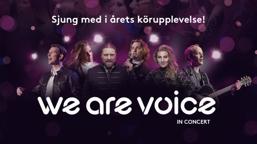 We Are Voice in concert