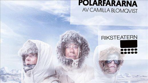 Polarfararna