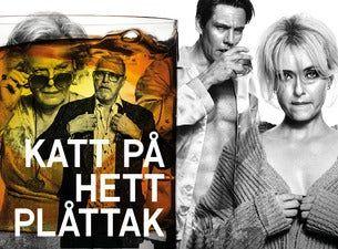KATT PÅ HETT PLÅTTAK