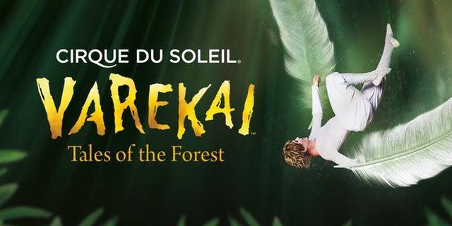 "Cirque du Soleils ""Varekai"" till Sverige"