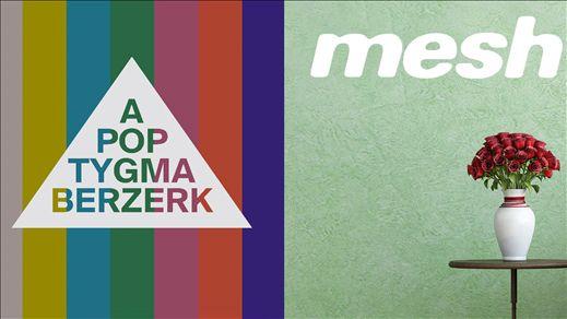 Mesh + Apoptygma Berzerk