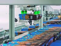 Der Parallelroboter nimmt Keksschachteln auf und gruppiert sie in der Zuführkette der Folienverpackungsmaschine.