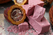 Barry Callebaut formally launches ruby, the fourth type, in the United States and Canada