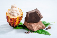 Barry Callebaut unleashes the full power of the cacaofruit