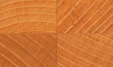 Kirschbaum Stirnholz