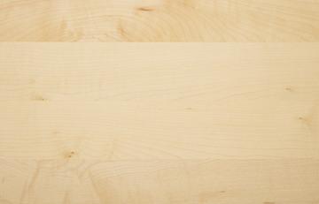 Holzarten Für Möbel möbel aus naturholz 7 laubhölzer stehen für sie zur auswahl