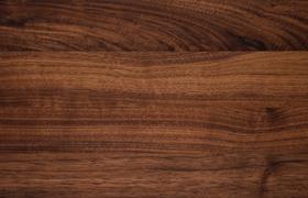 nussbaum massiv dgl
