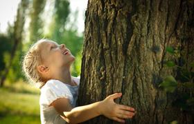 C452 290 Vorteile Nachhaltigkeit