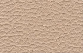 Leder-puma-beige