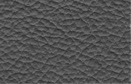 Leder-puma-carbone