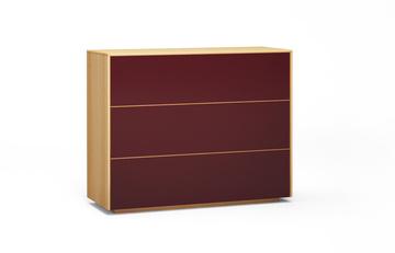 Sideboard-s501-farbglas-ral3005-a1w-buche